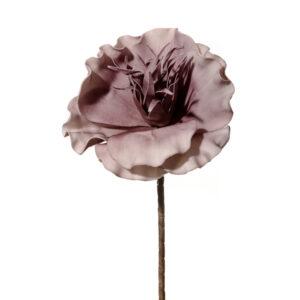 Λουλουδι μονο πλατυφυλλο